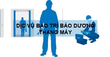 Dịch vụ bảo trì bảo dưỡng thang máy